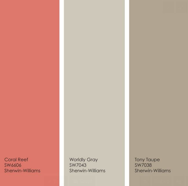 Bedroom Color Scheme Taupe Gray Coral Reef Paint Chips                                                                                                                                                                                 More