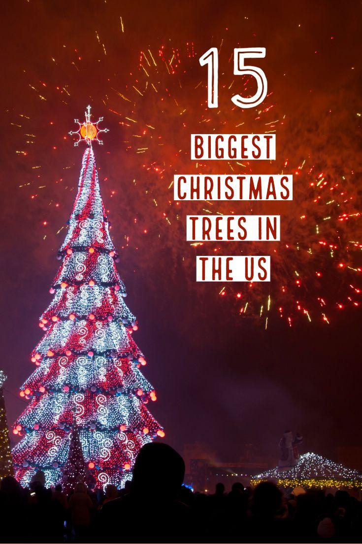 15 Biggest Christmas Trees In The Us Big Christmas Tree Holiday Travel Destinations Adventure Travel Wanderlust