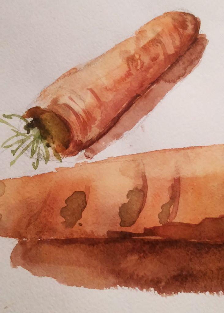 Морковь акварелью