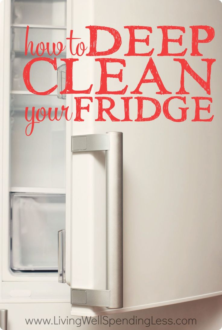 Kitchen Cleaning Tips And Tricks - How to deep clean your fridge