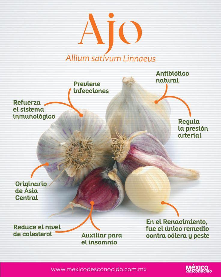 Food Hacks, Food Tips, Healing Herbs, Garlic, Health Fitness, Nature, Herbal Medicine, Vegetarian, Spices And Herbs