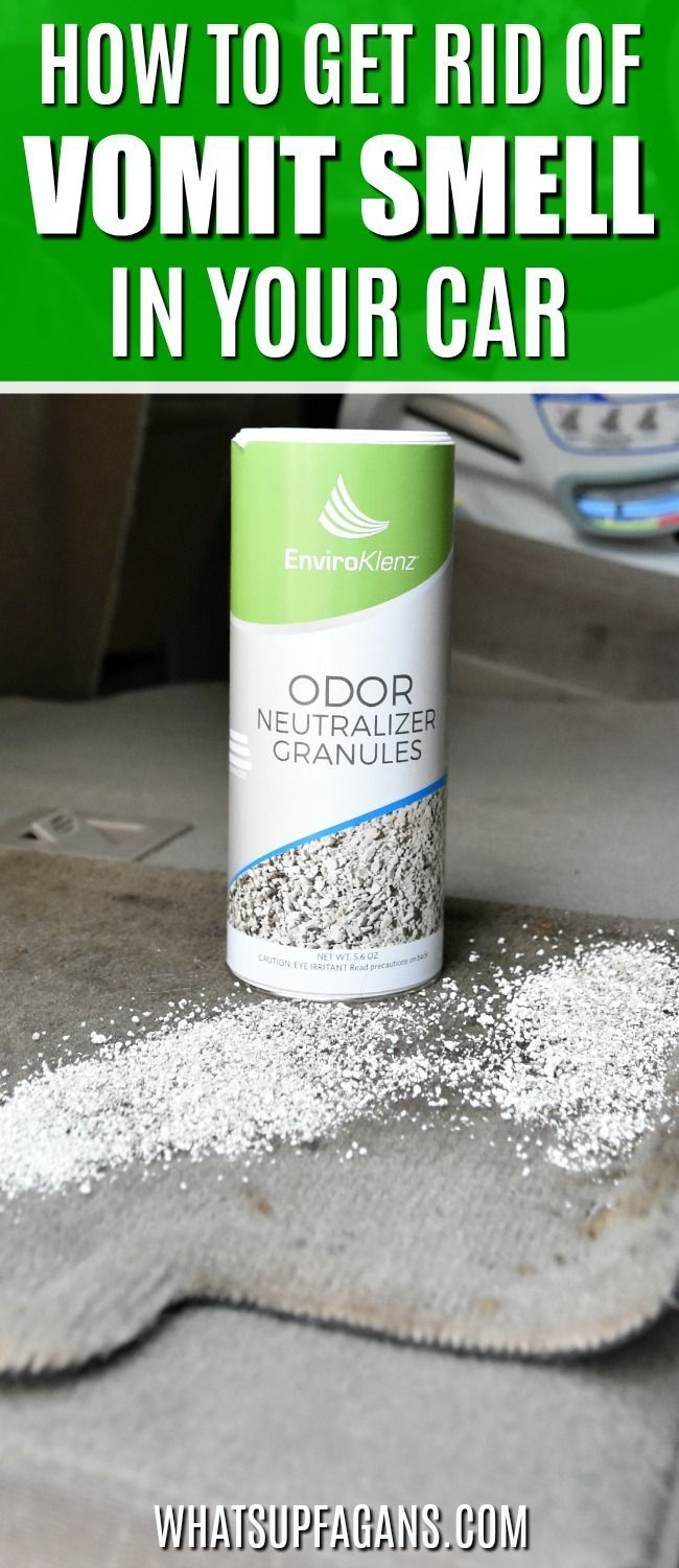 Car cleaning tip how to cleanup vomit how to get rid of vomit smell