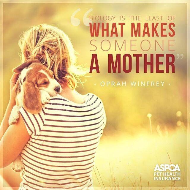 Biologie is het minste wat van iemand een moeder maakt - Oprah Winfrey ⠀ ⠀ Fijne moederdag ❤️💕 #hondentraining #thedogcompany #honden #hondenvaninstagram