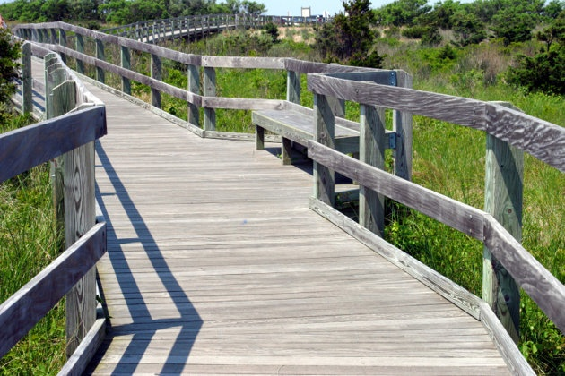 Boardwalk running through Everglades National Park - I've been here and would go again.