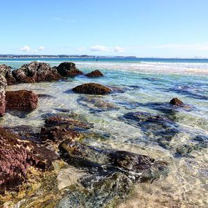 Exploring the rock pools between Greenmount & Rainbow Bay ... The water is sparkling at the moment   #VisitGoldCoast #ThisIsQueensland #SeeAustralia
