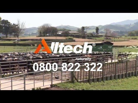 One of the adverts we produced for Alltech