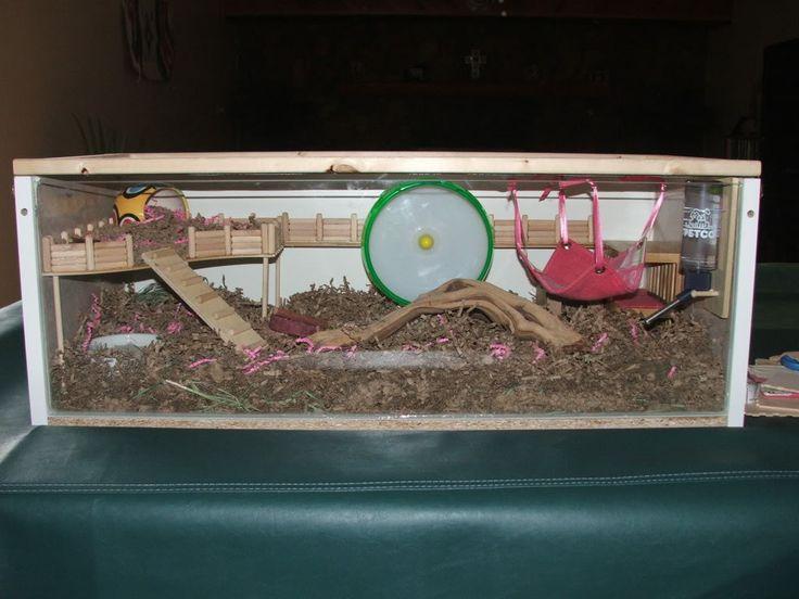 diy hamster cage syrian hamster pinterest hamster. Black Bedroom Furniture Sets. Home Design Ideas