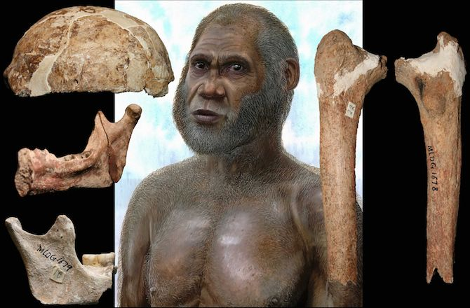 New fossil discoveries continue to push the known boundaries of human evolution.