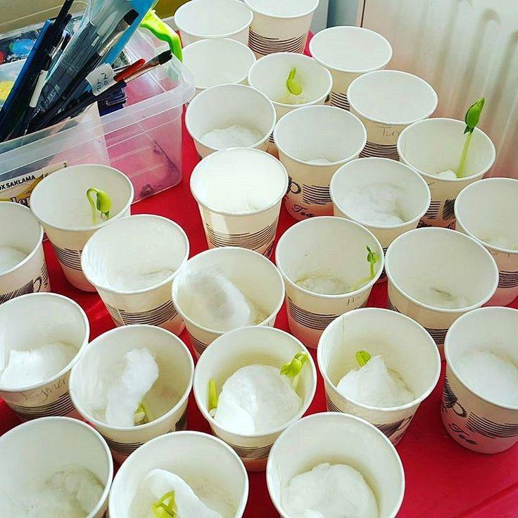 101 Ideas Montessori para que tus hijos aprendan y se diviertan en casa El método Montessori esta basado en investigaciones cientificas relacionadas con la capacidad de los niños para absorber conocimiento de sus alrededores,...