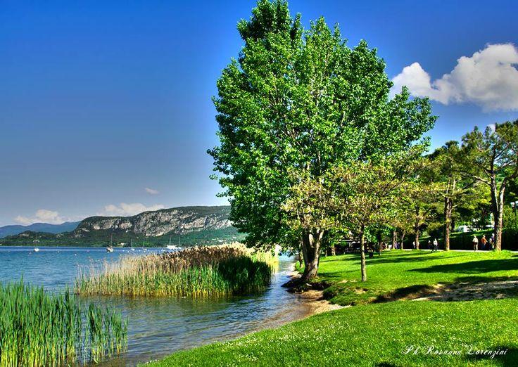#Bardolino [foto Rosanna Lorenzini] #LagoDiGarda #VisitLagoDiGarda #Veneto #VisitVeneto #GardaVeneto #TurismoVeneto #LakeGarda #Gardasee #Gardameer #GardaLake #Gardasøen #Italy #Italia #Italien #Italië