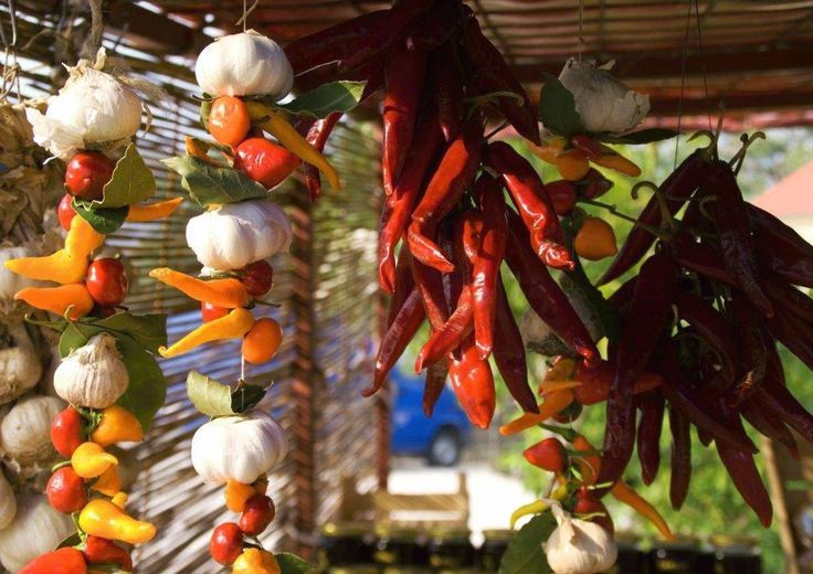 """Title: """"Color explosion"""". Paprica and garlic (Croatia)"""