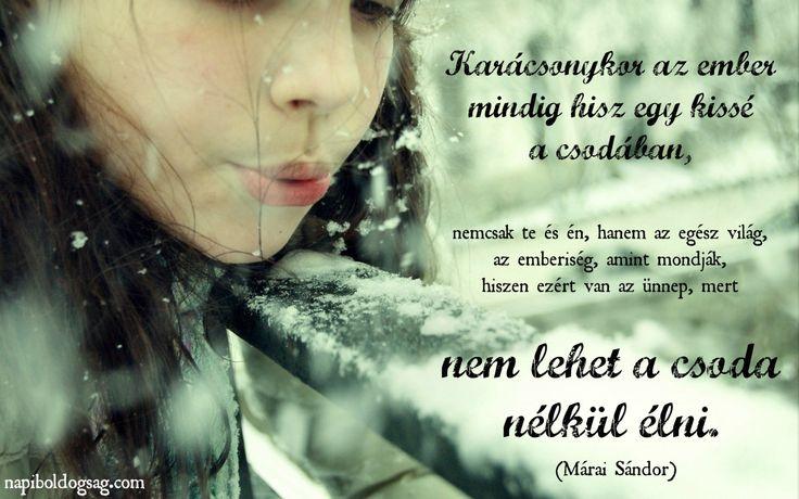 nem lehet a csoda nélkül élni márai sándor idézet