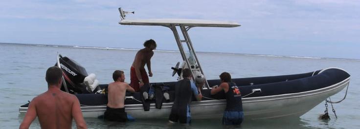 Our boat - Totara (puffer fish)