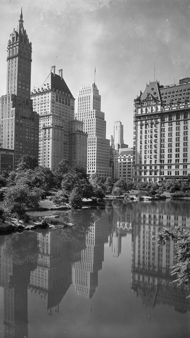 Central Park and the Placa Hotel