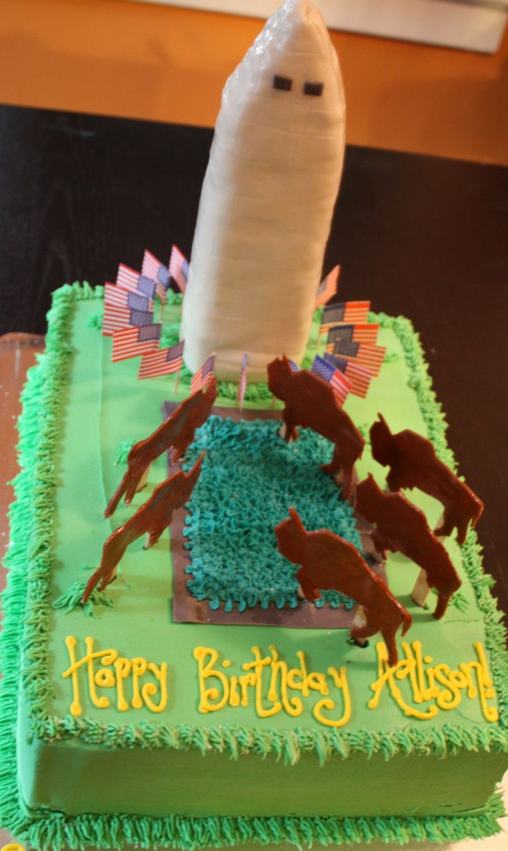 Best Birthday Cakes Images On Pinterest Birthday Cakes - Buffalo birthday cake