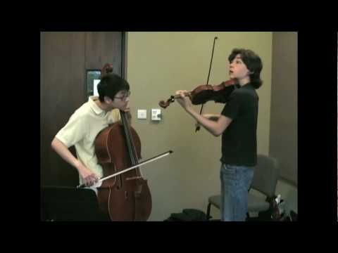 "Beatles ""Let it Be"" on violin an cello... inspiring!! i love this song especially with the cello and violin!"