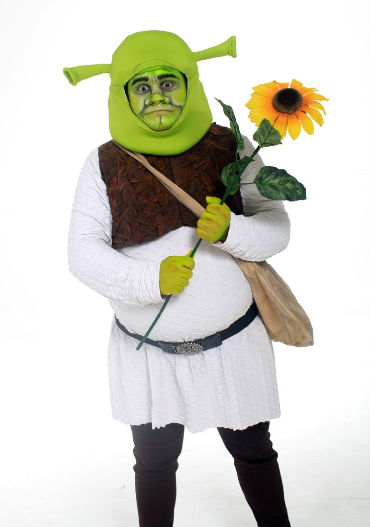 Get your family ready to see SHREK THE MUSICAL with this conversation starter:   SHREK THE MUSICAL  is based on the animated movie that makes fun of traditional fairy tale conventions.  What are some of your favorite fairy tales? How are fairy tales different from other stories? What kinds of things do you think are needed for a story to be a fairy tale? Why do you think fairy tales are such popular stories?