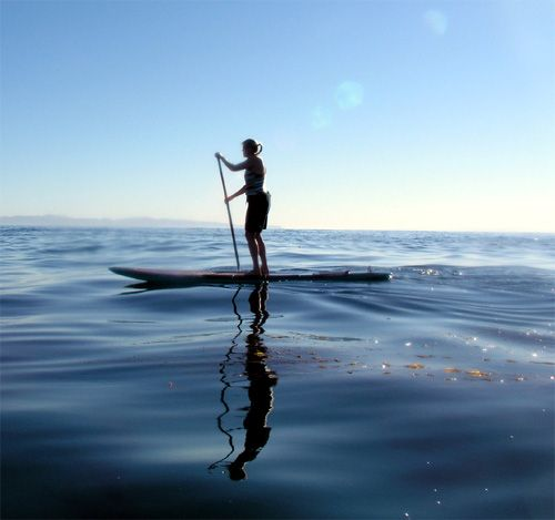 i want to go paddle boarding!Google Image, Body Workouts, Santa Barbara, Bays, The Ocean, Image Results, Stands Up, Paddles Boards, Health Fit