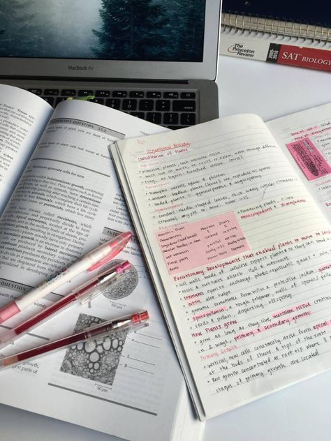 Looking at pictures of other people studying motivates me to study
