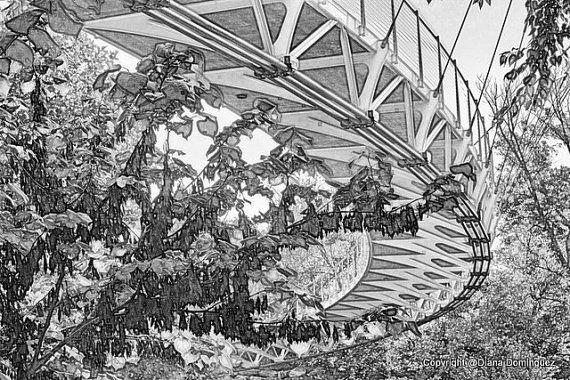 92 best sc art images on pinterest charleston south for Home decor greenville sc
