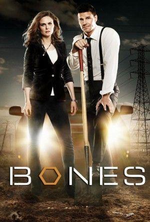 Ver Bones Online Gratis Latino Chepote TV