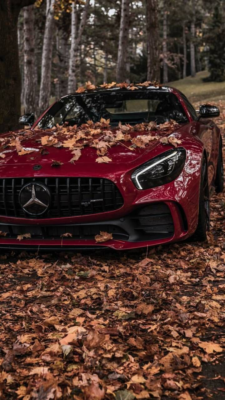 Download Mercedes AMG GTS Wallpaper by AbdxllahM 1c Free