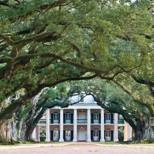 Oak Alley Plantation in Louisiana - been there! It really is this beautiful!!