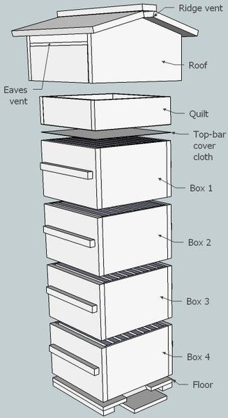 Homestead Survival: Plans for constructing a Beekeeping Box....I have always said I would have bee hives and chicken coops when I get my own house!!!