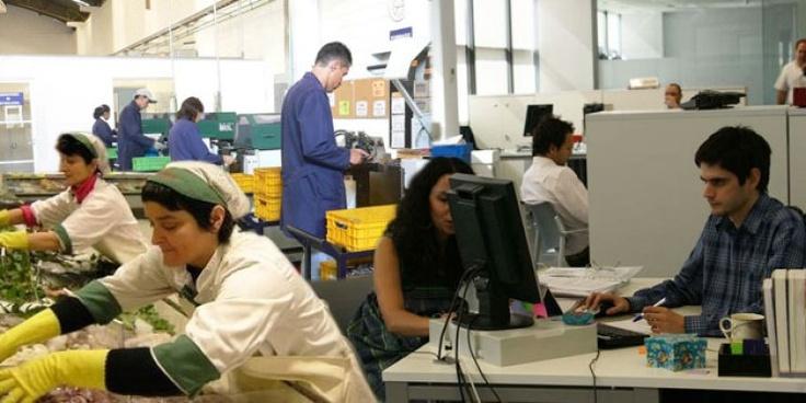 ¿Por qué se festeja hoy el Día del Trabajador? Te lo contamos, mientras lo festejamos con un 'Me Gusta' http://www.diarioveloz.com/c93573