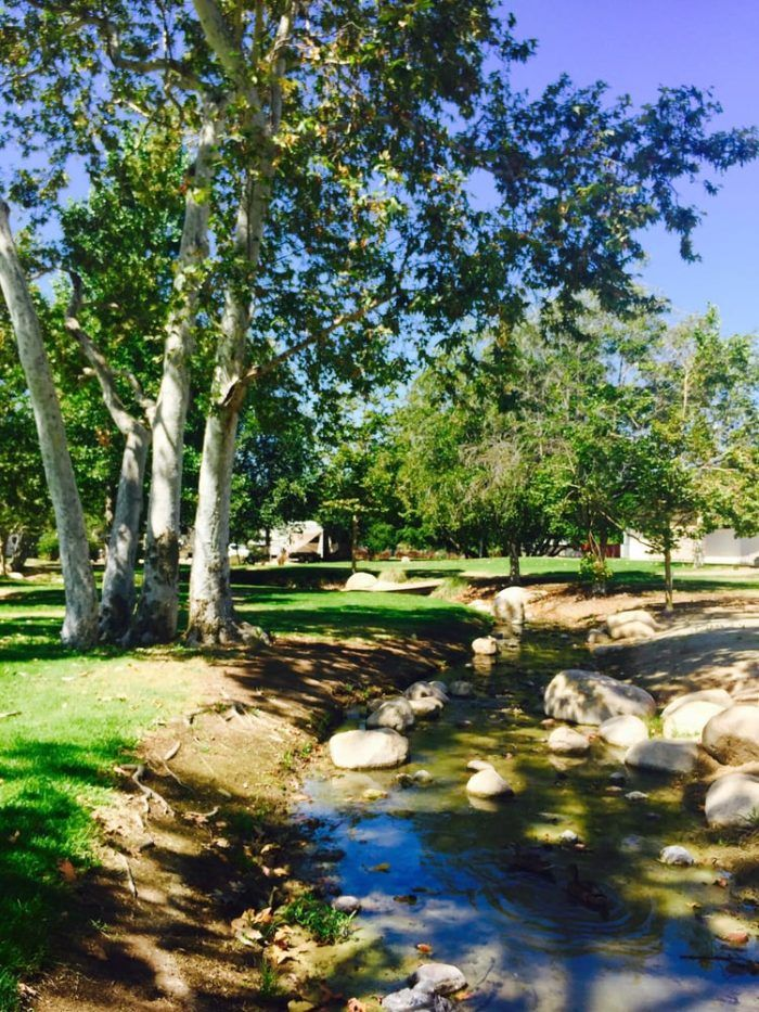 TThese Floating Cabins In Southern California Are The Ultimate Place To Stay Overnight This Summer    The surrounding area at Santee Lakes Recreation Preserive is a lush and green oasis that provides many great spots for outdoor strolls and fresh-air picnics.