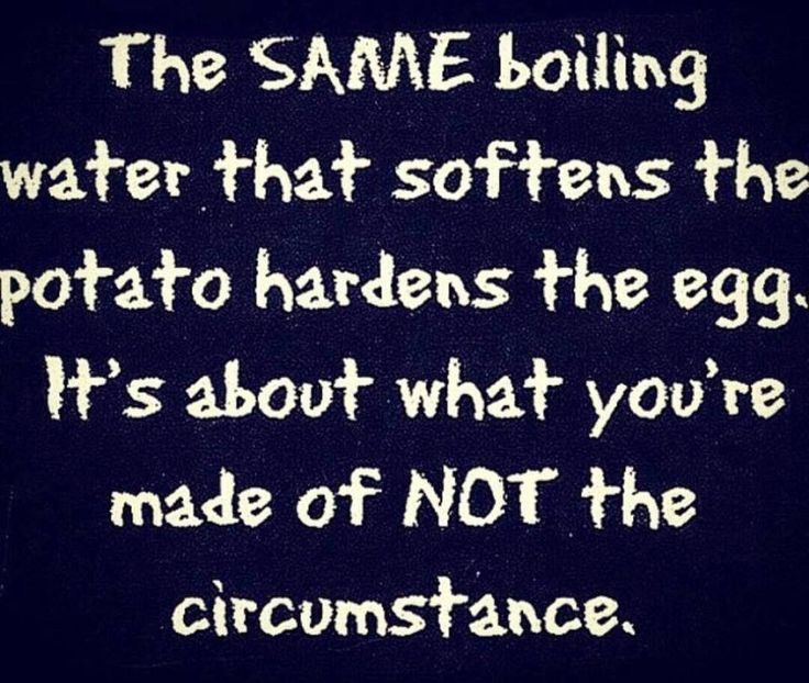 The Same Boiling Water * Your Daily Brain Vitamin v2.4.15 | The boiling water isn't the issue. What's key here is are you the potato or the egg? What are you made of? | Motivation | Inspiration | Quotes | Words of Wisdom | Advice