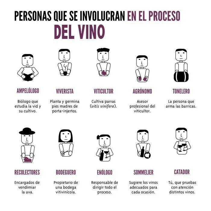 Personas que se implican en el proceso del #Vino #wine #vi