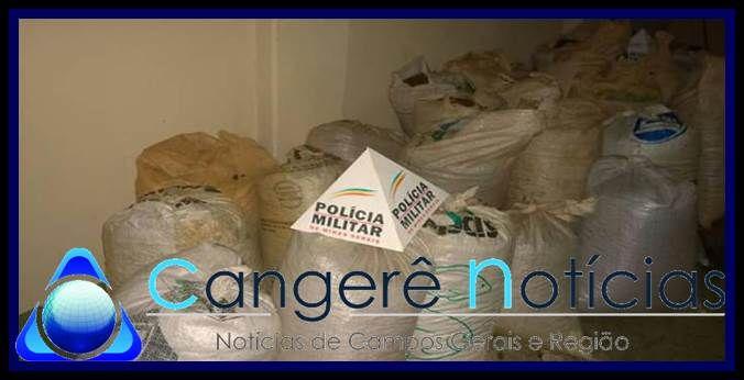 Policia Militar recupera 30 sacas de café furtados em Ilicínea-MG