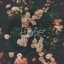 Hope Instagram: wikaa_dx