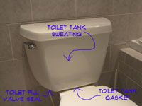Problem Areas for a Leaking Toilet Tank