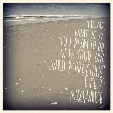 hmm?Wild, The Plans, Back Tattoo, Things, Mom Quotes, Living, Inspiration Quotes, Mary Olive, Precious Life