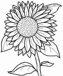 Resultado de imagen para imagenes de girasoles para pintar - Dibujos para pintar en tela infantiles ...