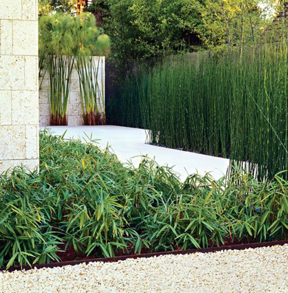 groupings of similar no-fuss plants makes a clean and modern backyard design.