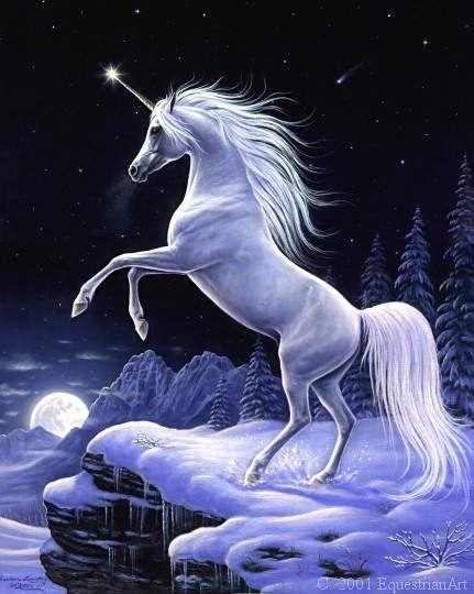 http://img353.imageshack.us/img353/2610/unicorno0vqqg4.jpg