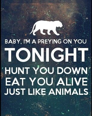 animals maroon 5 - Pesquisa Google