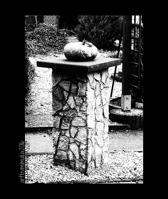 Pumpkin on a Pedestal monochrome photography by mimulux patricia no