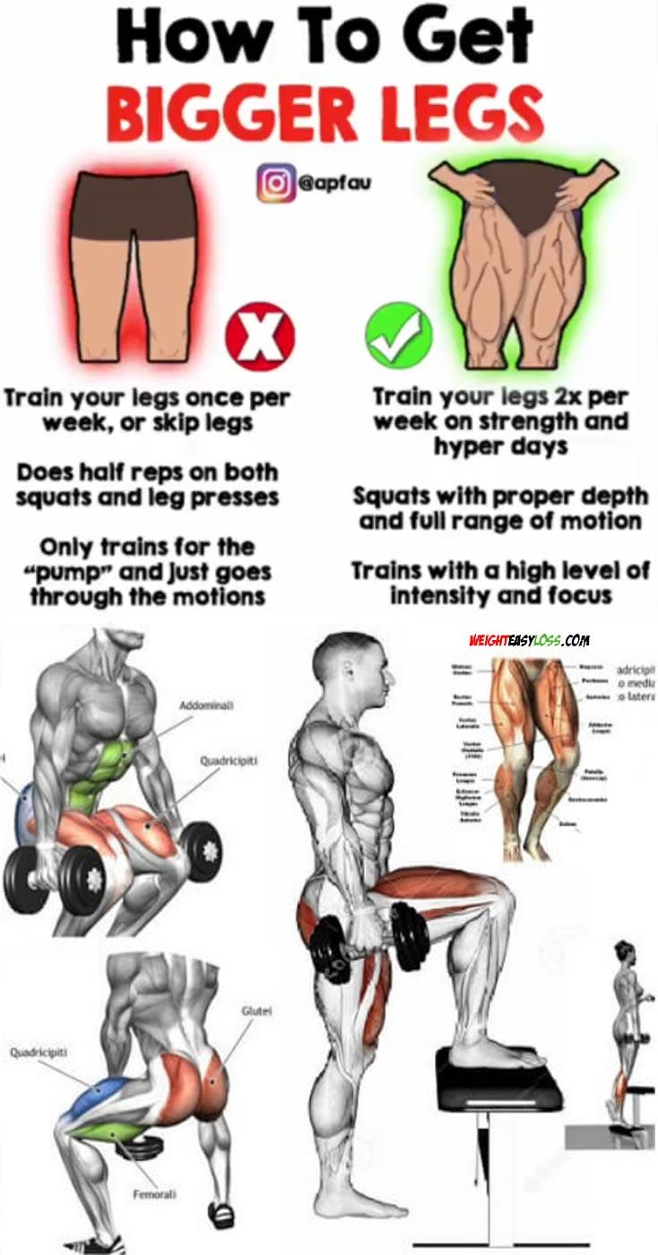 43++ How to get large calf muscles inspirations