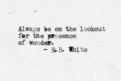 Siempre a la caza de la presencia de lo maravilloso.