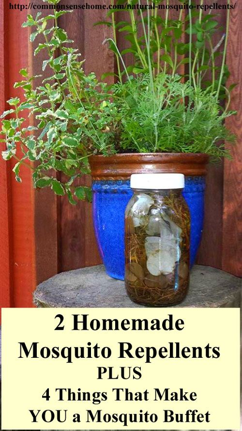 17 Best Ideas About Mosquito Spray On Pinterest Diy