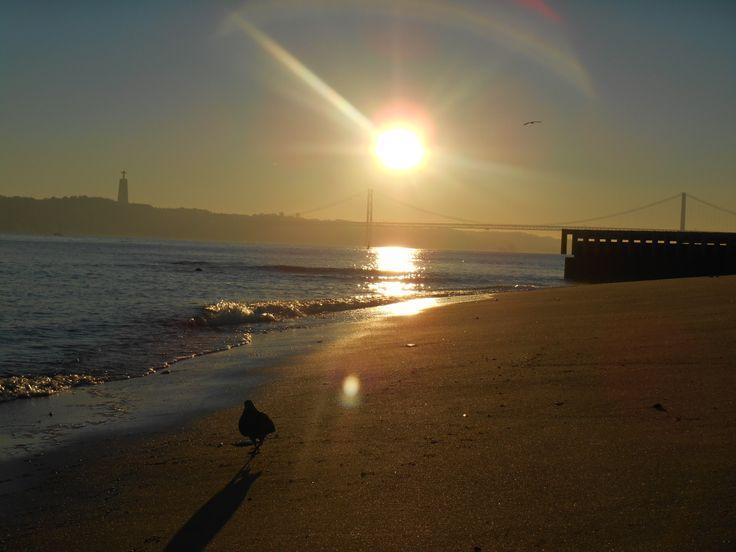 Lisboa Sun Set