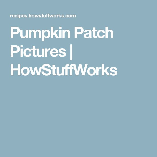 Pumpkin Patch Pictures | HowStuffWorks