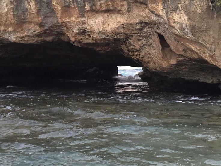 Cueva De Las Golondrinas En Manatí, PR!!!