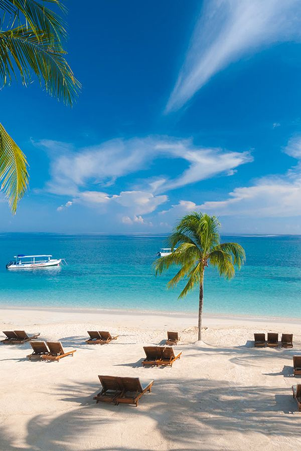 5 Reasons to Visit Ocho Rios, Jamaica   Sandals Resorts
