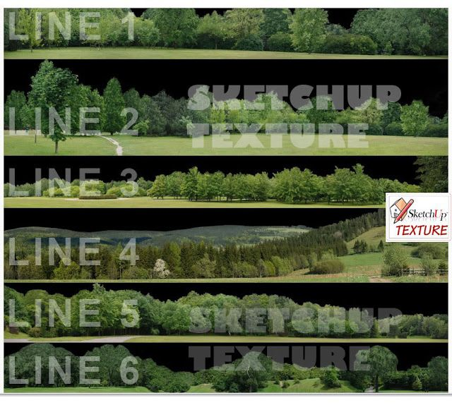 Image Result For Sketchup Trees