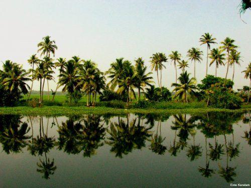 Kerala Nature Hd Fine Wallpapers